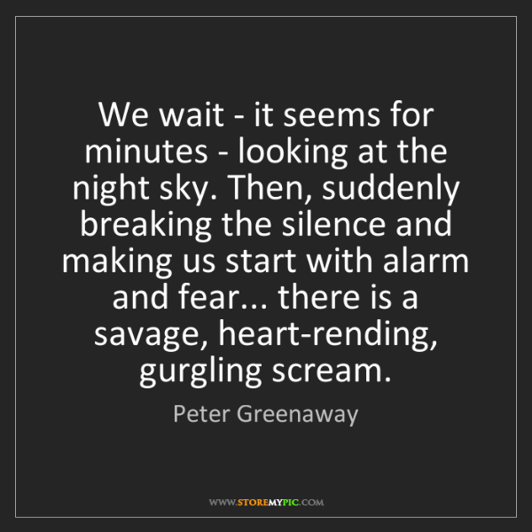 Peter Greenaway: We wait - it seems for minutes - looking at the night...