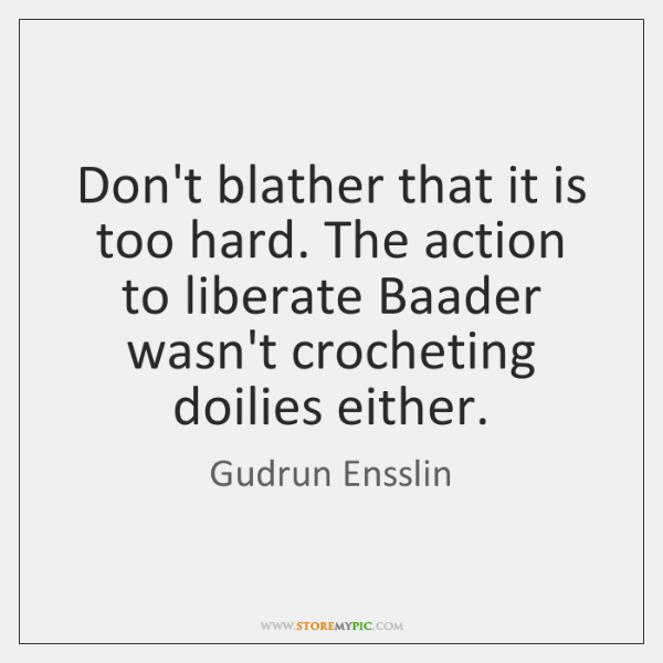 Don't blather that it is too hard. The action to liberate Baader ...