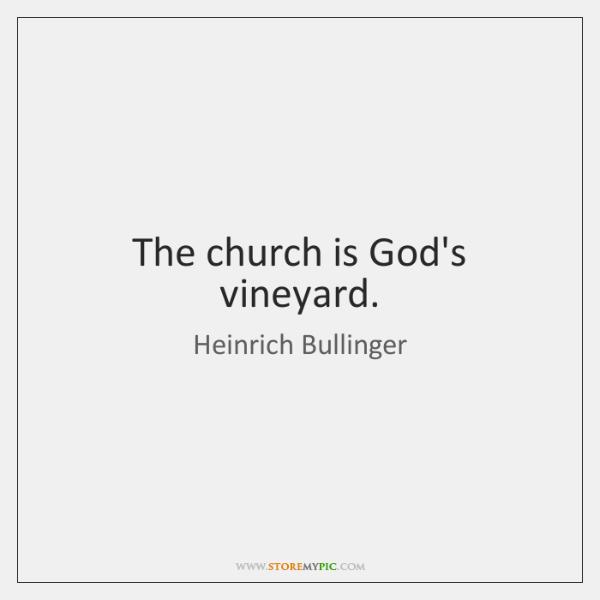 The church is God's vineyard.