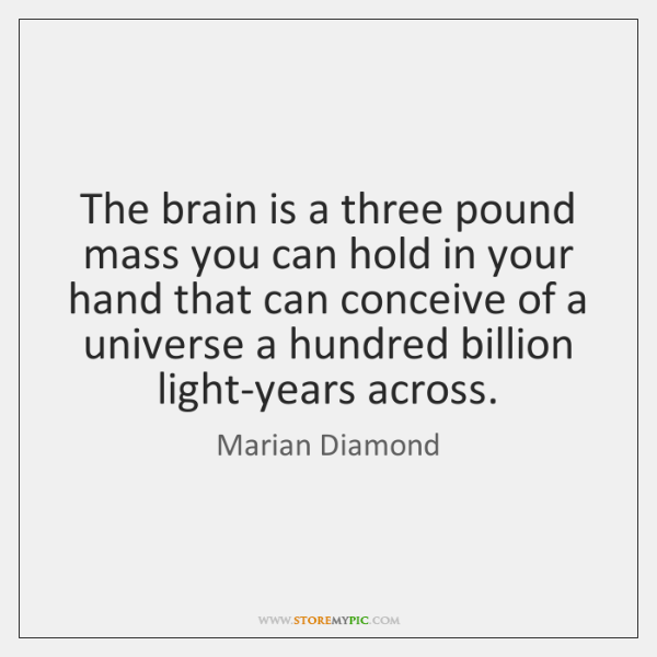The brain is a three pound mass you can hold in your ...
