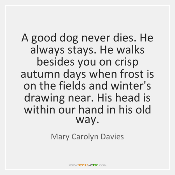 A good dog never dies. He always stays. He walks besides you ...