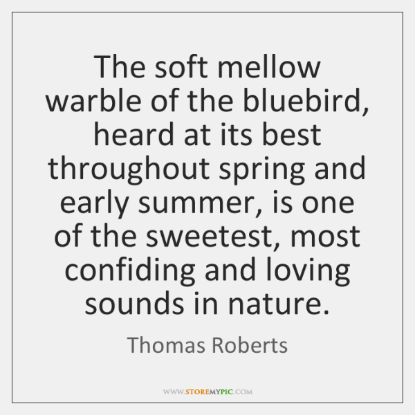 The soft mellow warble of the bluebird, heard at its best throughout ...
