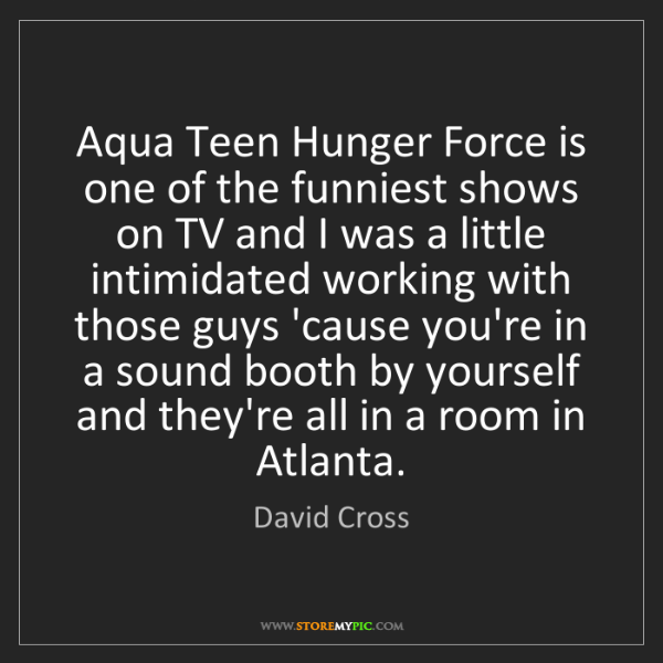 David Cross: Aqua Teen Hunger Force is one of the funniest shows on...