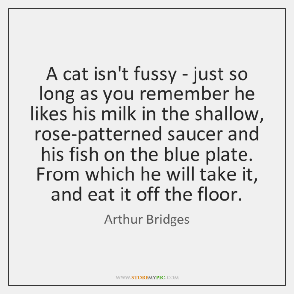 A cat isn't fussy - just so long as you remember he ...
