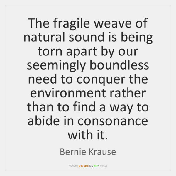 The fragile weave of natural sound is being torn apart by our ...