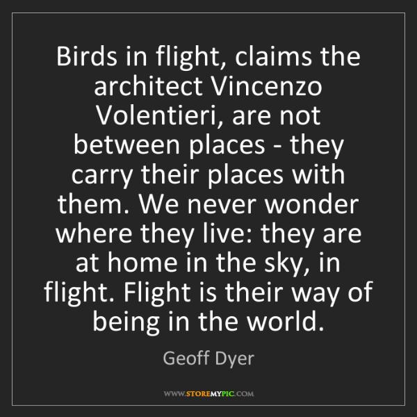 Geoff Dyer: Birds in flight, claims the architect Vincenzo Volentieri,...