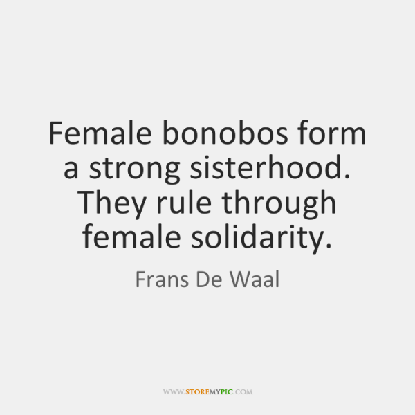 Female bonobos form a strong sisterhood. They rule through female solidarity.