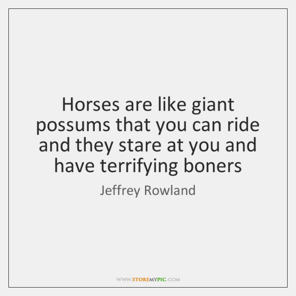 Horses are like giant possums that you can ride and they stare ...
