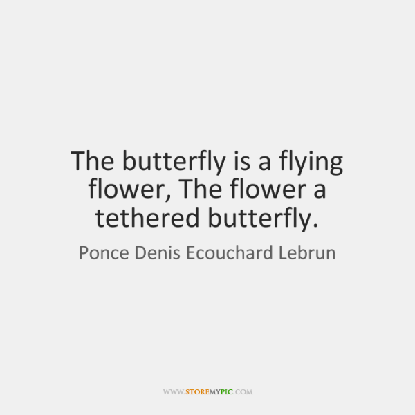 The butterfly is a flying flower, The flower a tethered butterfly.