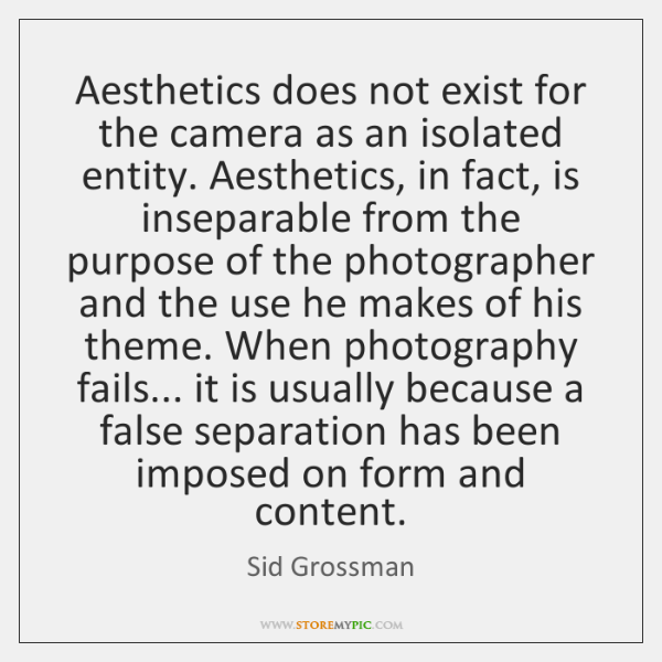 Aesthetics does not exist for the camera as an isolated entity. Aesthetics, ...