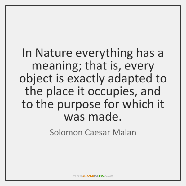 In Nature everything has a meaning; that is, every object is exactly ...