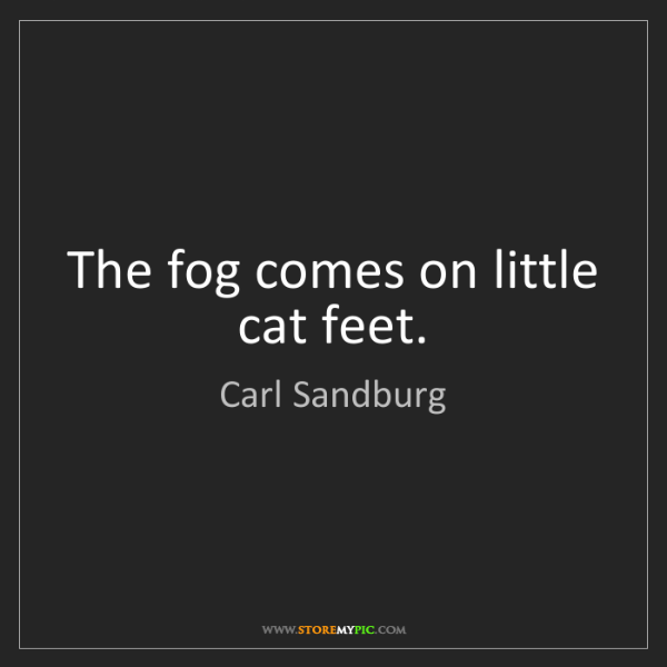 Carl Sandburg: The fog comes on little cat feet.