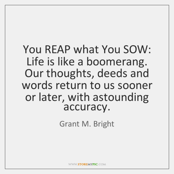 You Reap What You Sow Life Is Like A Boomerang Our Thoughts