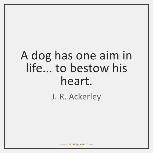 A dog has one aim in life... to bestow his heart.