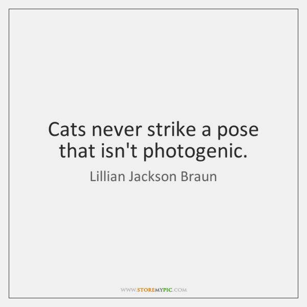 Cats never strike a pose that isn't photogenic.