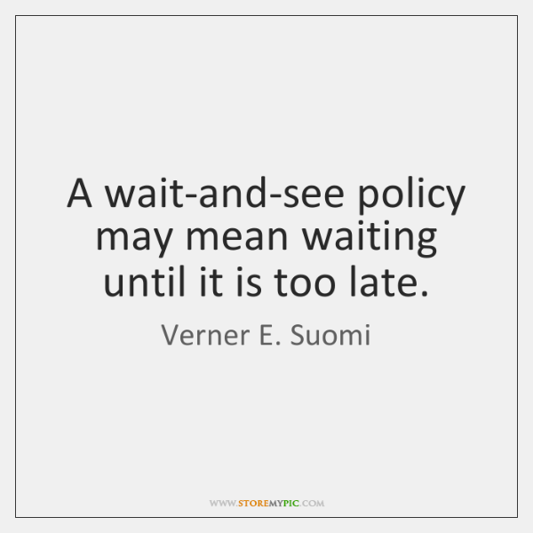 A wait-and-see policy may mean waiting until it is too late.