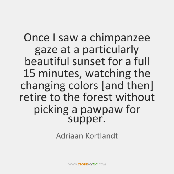 Once I saw a chimpanzee gaze at a particularly beautiful sunset for ...