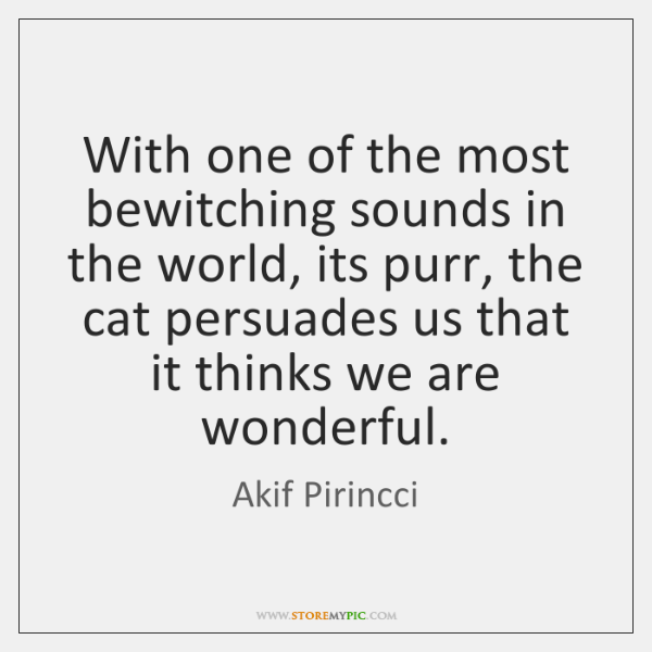 With one of the most bewitching sounds in the world, its purr, ...