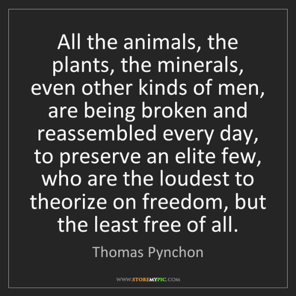 Thomas Pynchon: All the animals, the plants, the minerals, even other...