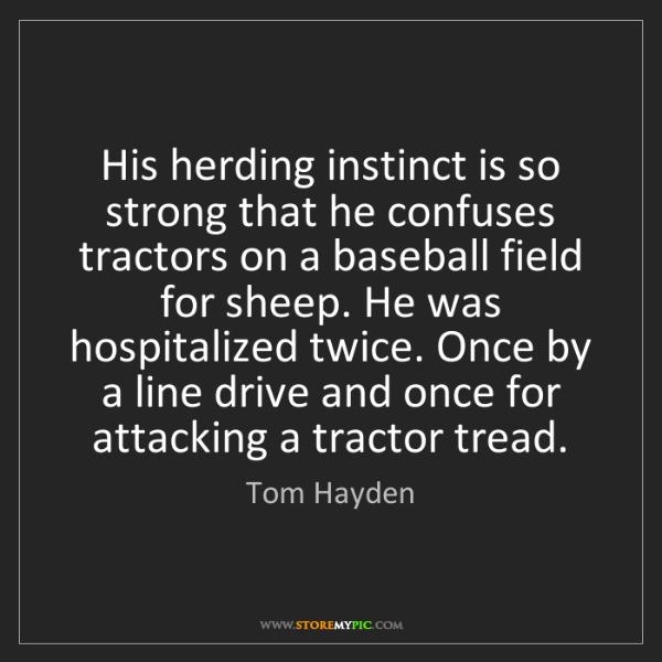 Tom Hayden: His herding instinct is so strong that he confuses tractors...