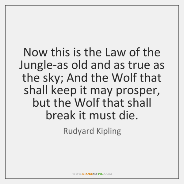 this is the law of the jungle