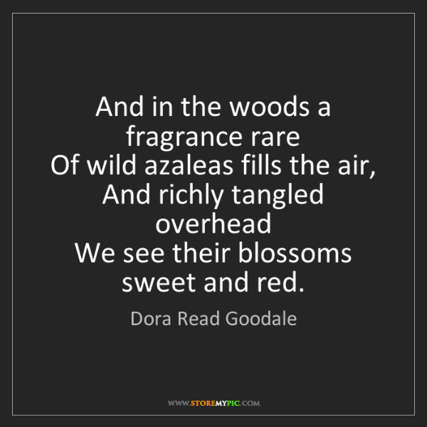 Dora Read Goodale: And in the woods a fragrance rare   Of wild azaleas fills...