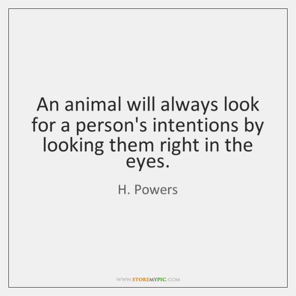 An animal will always look for a person's intentions by looking them ...