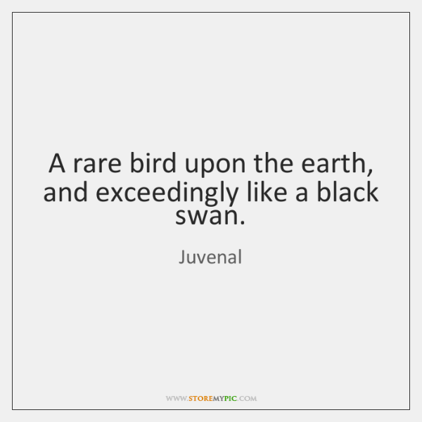 A rare bird upon the earth, and exceedingly like a black swan.