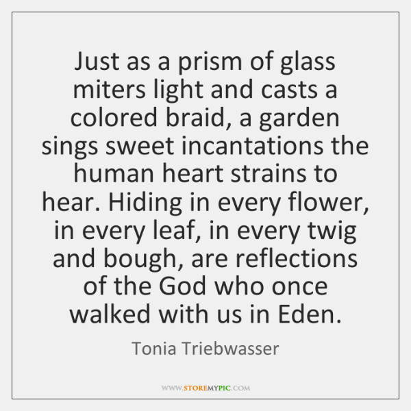 Just as a prism of glass miters light and casts a colored ...