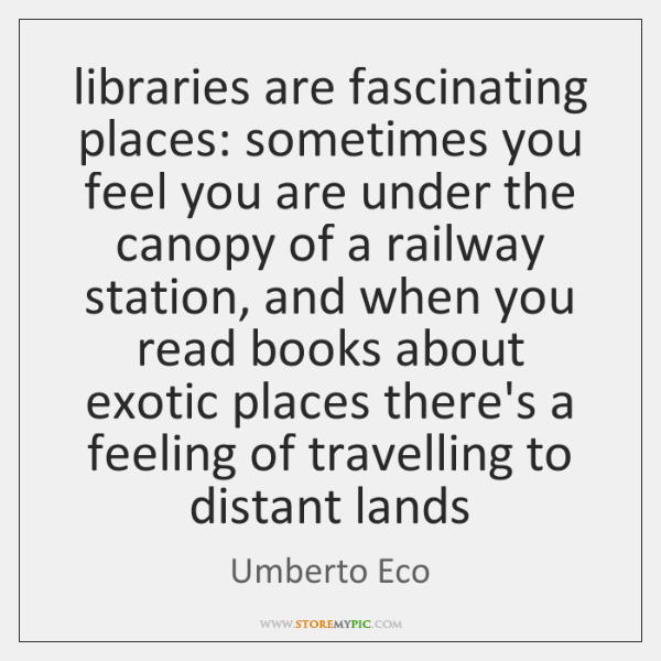 libraries are fascinating places: sometimes you feel you are under the canopy ...