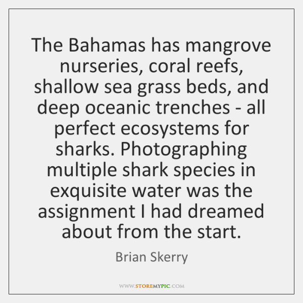 The Bahamas has mangrove nurseries, coral reefs, shallow sea grass beds, and ...