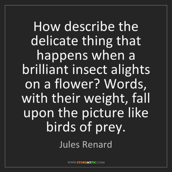 Jules Renard: How describe the delicate thing that happens when a brilliant...