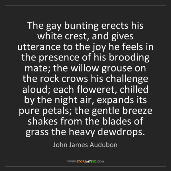 John James Audubon: The gay bunting erects his white crest, and gives utterance...