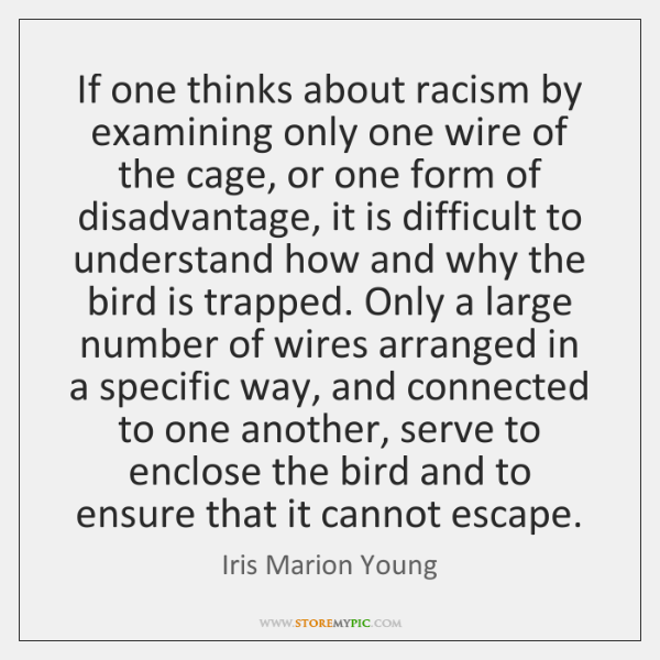 If one thinks about racism by examining only one wire of the ...