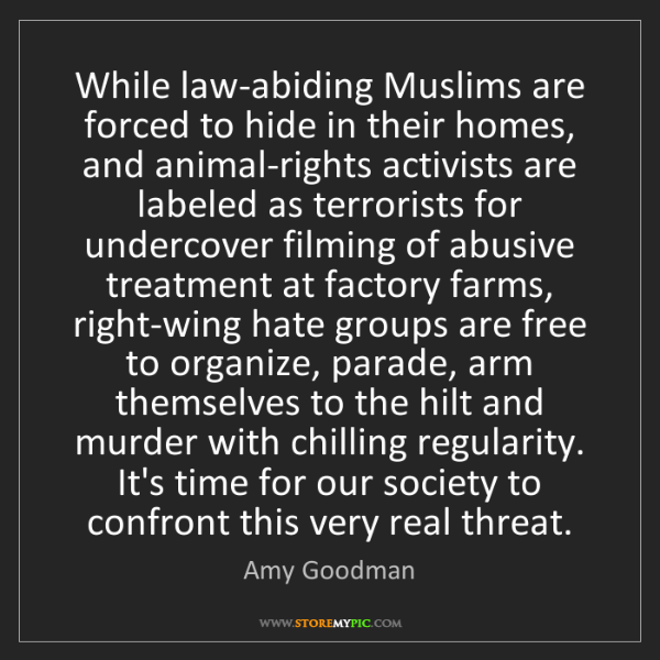 Amy Goodman: While law-abiding Muslims are forced to hide in their...
