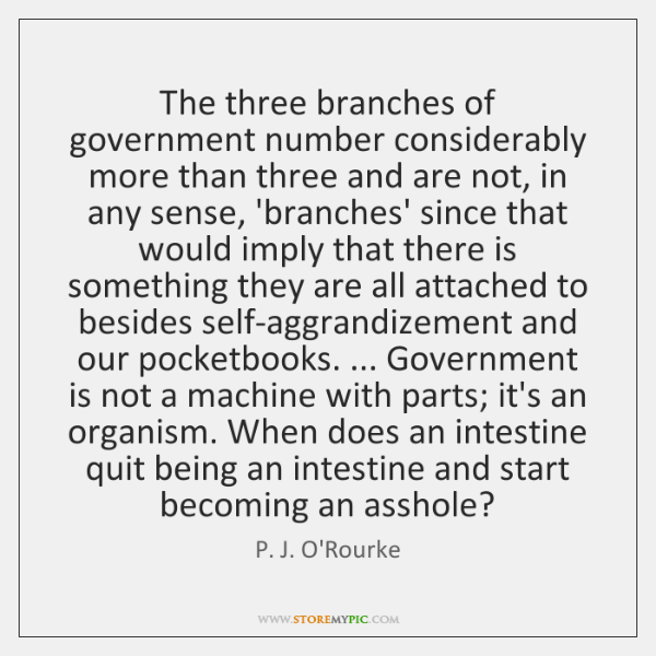 The three branches of government number considerably more than three and are ...