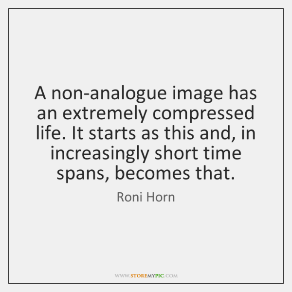 A non-analogue image has an extremely compressed life. It starts as this ...