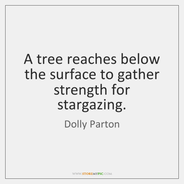 A tree reaches below the surface to gather strength for stargazing.
