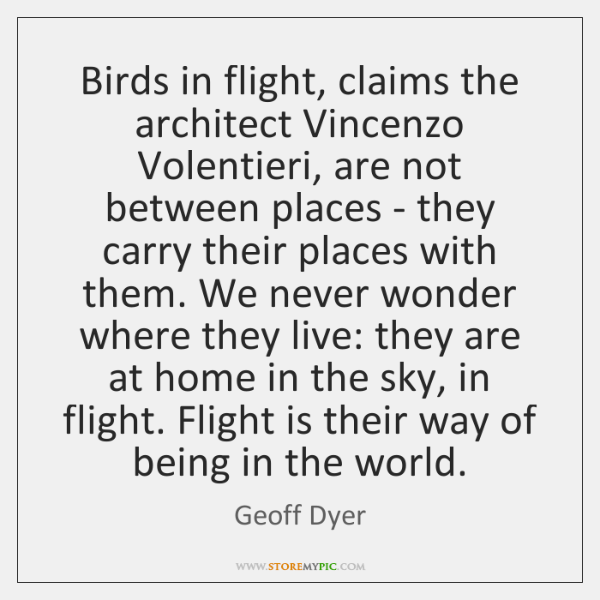 Birds in flight, claims the architect Vincenzo Volentieri, are not between places ...