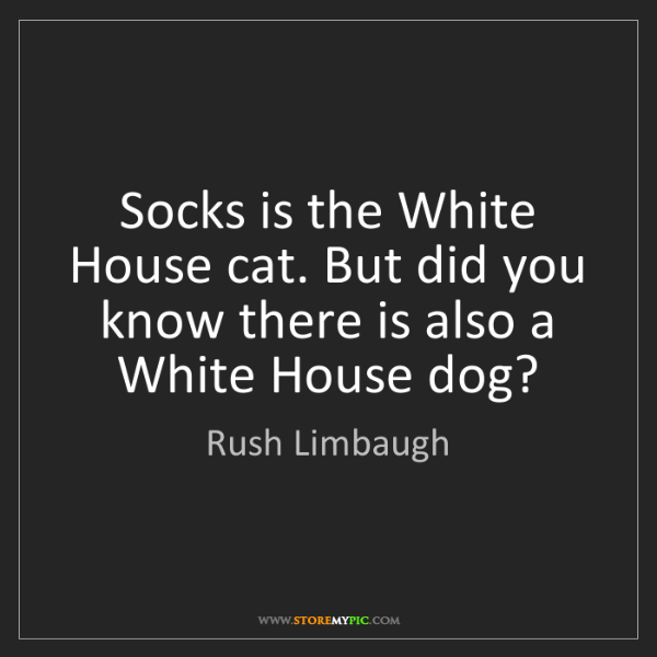 Rush Limbaugh: Socks is the White House cat. But did you know there...