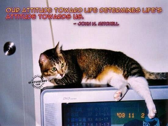 Our attitude toward life determines lifes attitude towards us 001