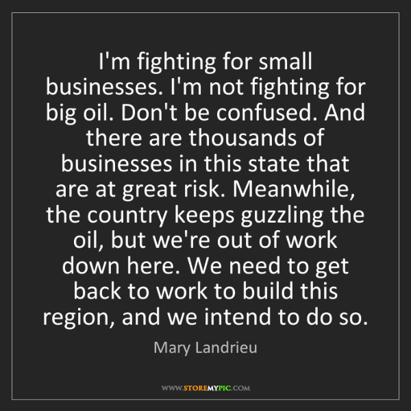Mary Landrieu: I'm fighting for small businesses. I'm not fighting for...