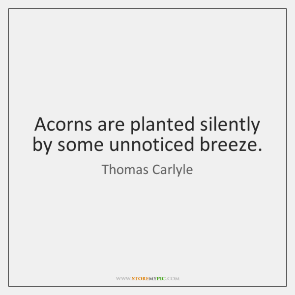 Acorns are planted silently by some unnoticed breeze.