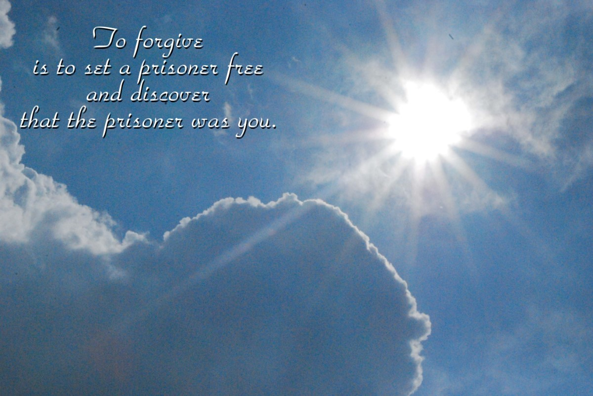 To Forgive Is To Set A Prisoner Free And Disover That The Prisoner