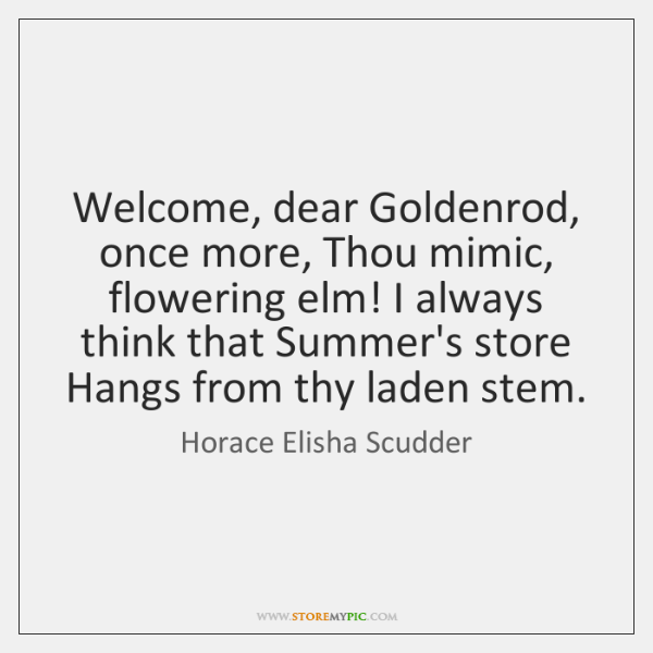Welcome, dear Goldenrod, once more, Thou mimic, flowering elm! I always think ...