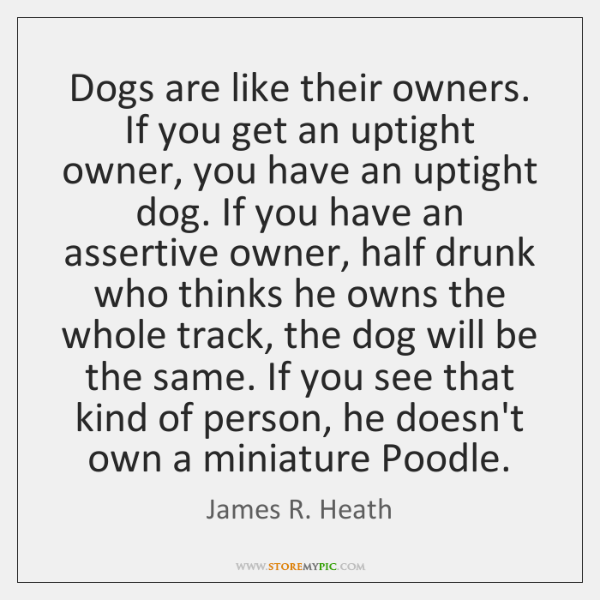Dogs are like their owners. If you get an uptight owner, you ...