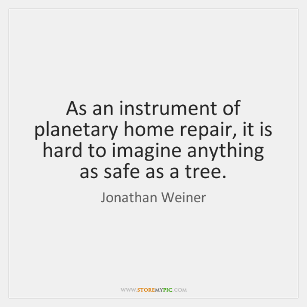 As an instrument of planetary home repair, it is hard to imagine ...