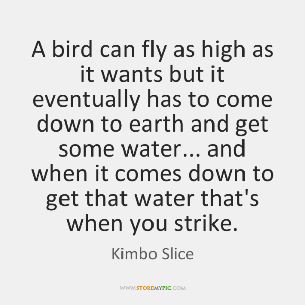 A bird can fly as high as it wants but it eventually ...