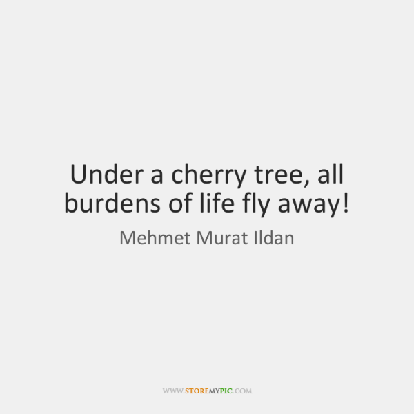 Under a cherry tree, all burdens of life fly away!