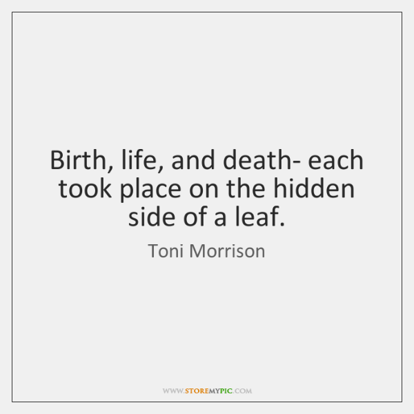 Birth, life, and death- each took place on the hidden side of ...